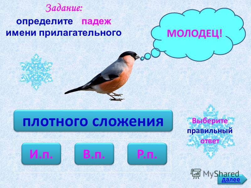 молодые снегири И.п. В.п. Р.п. Задание: определите падеж имени прилагательного ПОДУМАЙ!МОЛОДЕЦ! далее Выберите правильный ответ