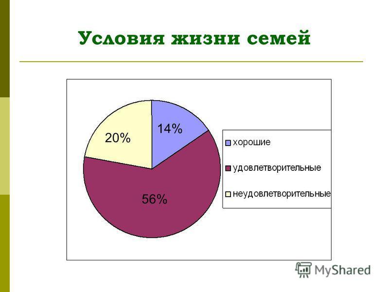 Условия жизни семей 14% 20% 56%