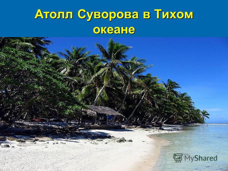 Атолл Суворова в Тихом океане