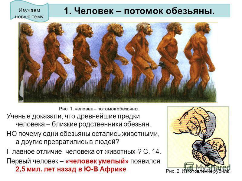 1. Человек – потомок обезьяны. Ученые доказали, что древнейшие предки человека – близкие родственники обезьян. НО почему одни обезьяны остались животными, а другие превратились в людей? Г лавное отличие человека от животных-? С. 14. Первый человек –