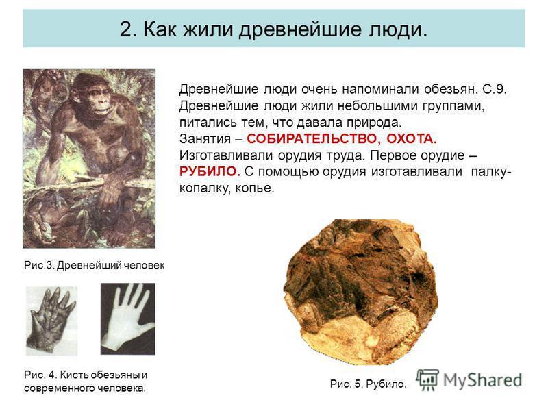 2. Как жили древнейшие люди. Рис.3. Древнейший человек Древнейшие люди очень напоминали обезьян. С.9. Древнейшие люди жили небольшими группами, питались тем, что давала природа. Занятия – СОБИРАТЕЛЬСТВО, ОХОТА. Изготавливали орудия труда. Первое оруд