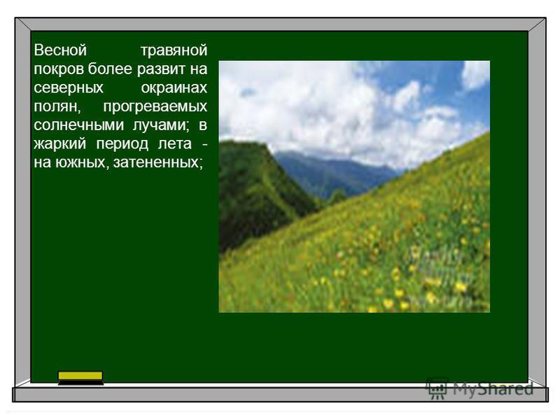 Весной травяной покров более развит на северных окраинах полян, прогреваемых солнечными лучами; в жаркий период лета - на южных, затененных;