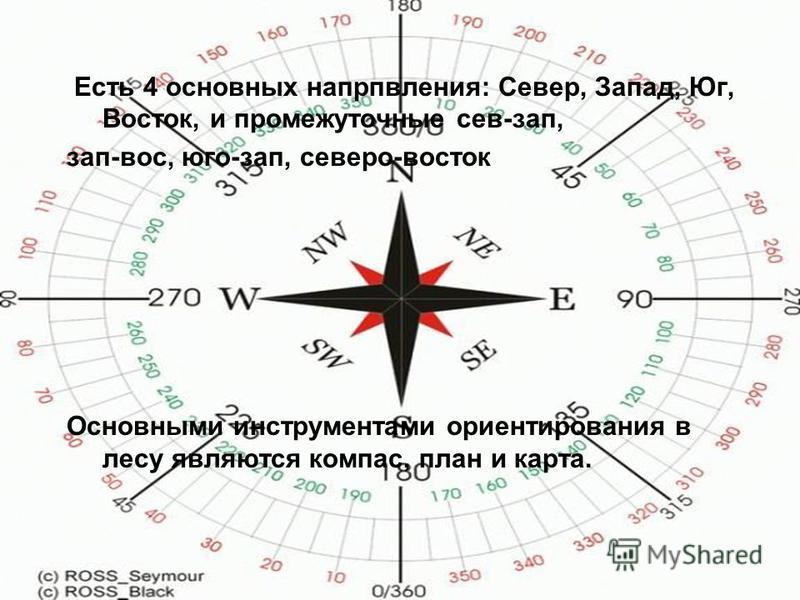 Есть 4 основных направления: Север, Запад, Юг, Восток, и промежуточные сев-зап, зап-вос, юго-зап, северо-восток Основными инструментами ориентирования в лесу являются компас, план и карта.