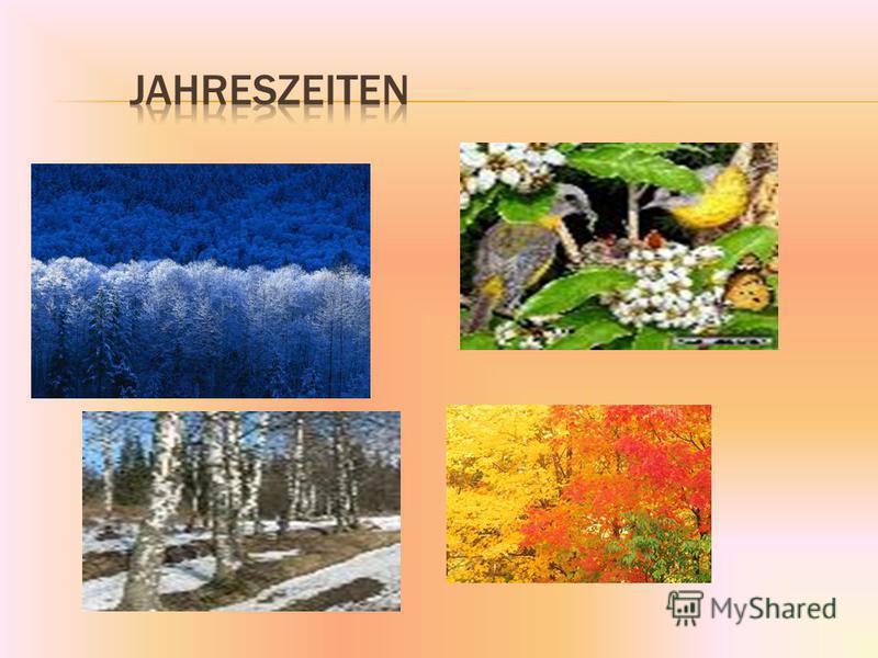 Der Winter Der Fr ü hling Der Sommer Der Herbst