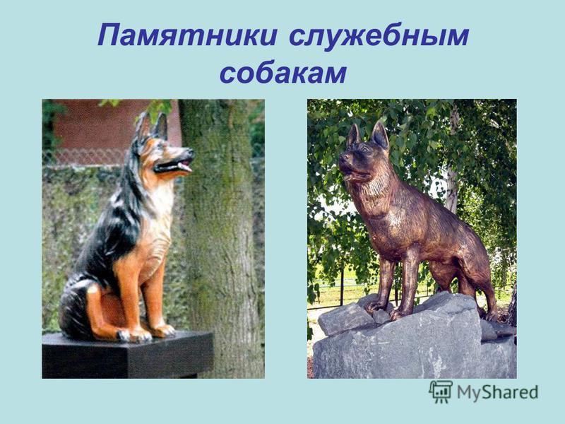 Памятники служебным собакам