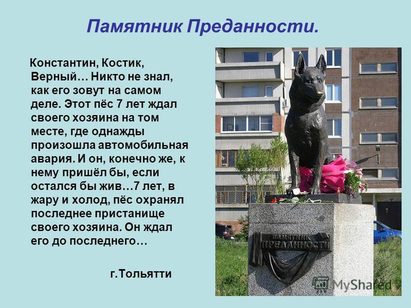 Памятник Преданности. Константин, Костик, Верный… Никто не знал, как его зовут на самом деле. Этот пёс 7 лет ждал своего хозяина на том месте, где однажды произошла автомобильная авария. И он, конечно же, к нему пришёл бы, если остался бы жив…7 лет,