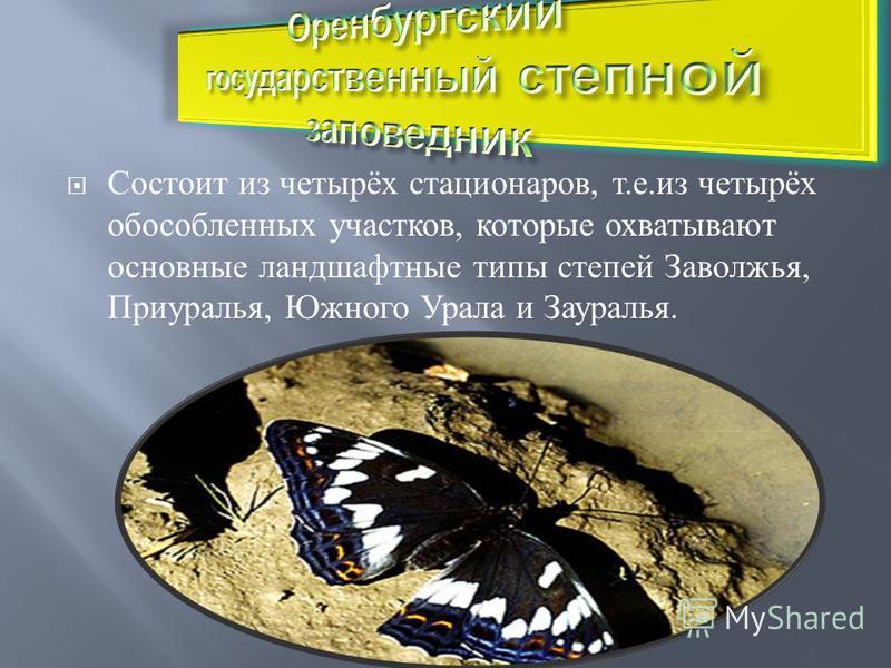 Состоит из четырёх стационаров, т. е. из четырёх обособленных участков, которые охватывают основные ландшафтные типы степей Заволжья, Приуралья, Южного Урала и Зауралья.