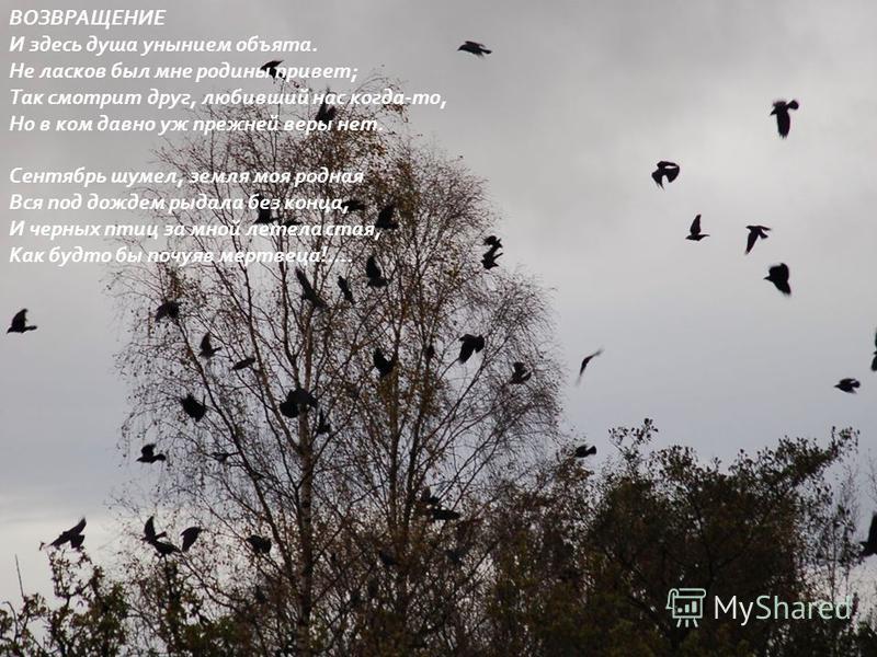 ВОЗВРАЩЕНИЕ И здесь душа унынием объята. Не ласков был мне родины привет ; Так смотрит друг, любивший нас когда - то, Но в ком давно уж прежней веры нет. Сентябрь шумел, земля моя родная Вся под дождем рыдала без конца, И черных птиц за мной летела с