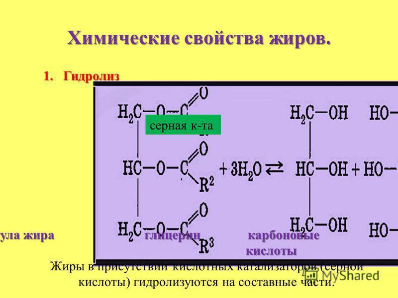 Химические свойства жиров. 1. Гидролиз молекула жира глицерин карбоновые кислоты кислоты Жиры в присутствии кислотных катализаторов (серной кислоты) гидролизуются на составные части. серная к-та