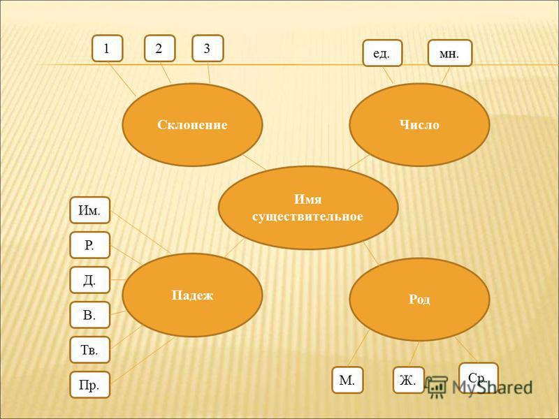 Имя существительное Число Склонение Падеж Род 123 ед.мн. Им. Р. Д. В. Тв. Пр. М.Ж. Ср.