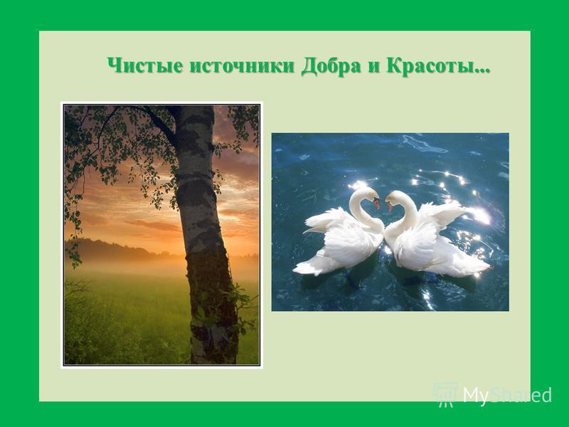 Чистые источники Добра и Красоты...