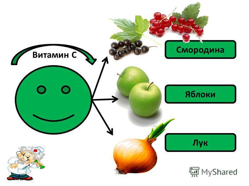 Витамин С Смородина Яблоки Лук