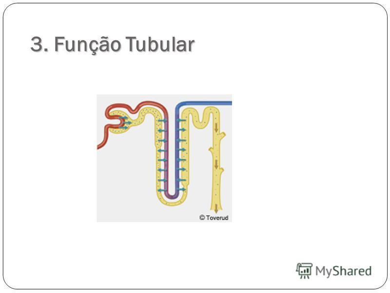 3. Função Tubular