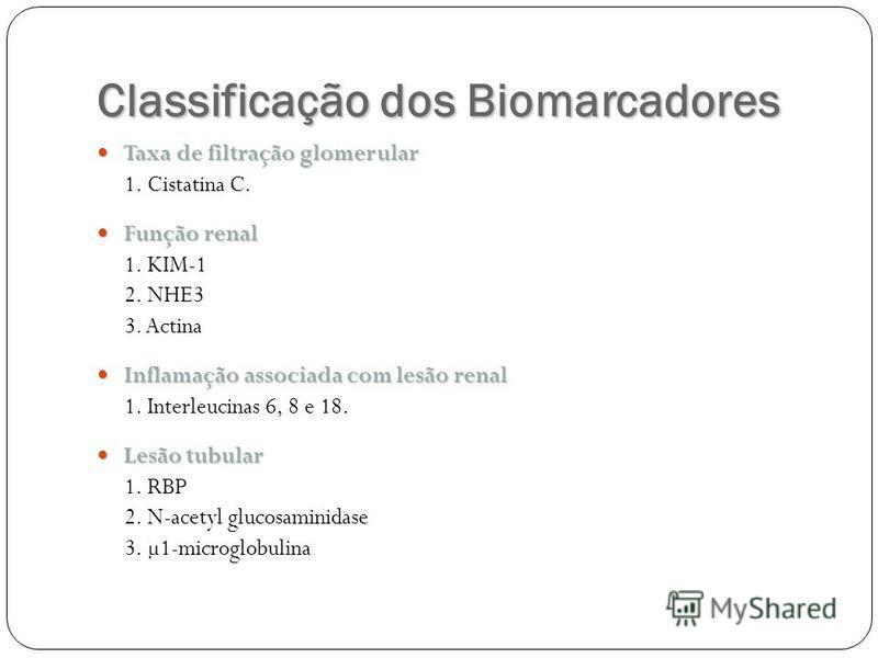 Classificação dos Biomarcadores Taxa de filtração glomerular Taxa de filtração glomerular 1. Cistatina C. Função renal Função renal 1. KIM-1 2. NHE3 3. Actina Inflamação associada com lesão renal Inflamação associada com lesão renal 1. Interleucinas