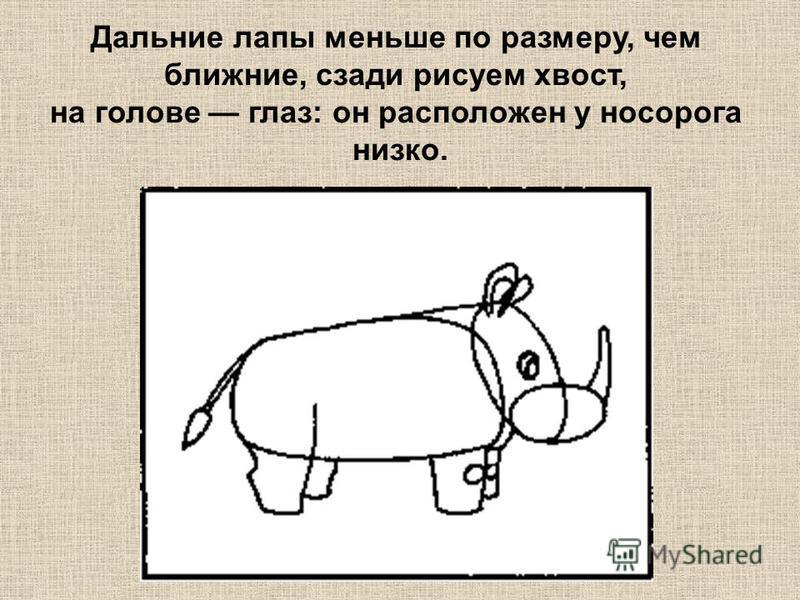 Дальние лапы меньше по размеру, чем ближние, сзади рисуем хвост, на голове глаз: он расположен у носорога низко.