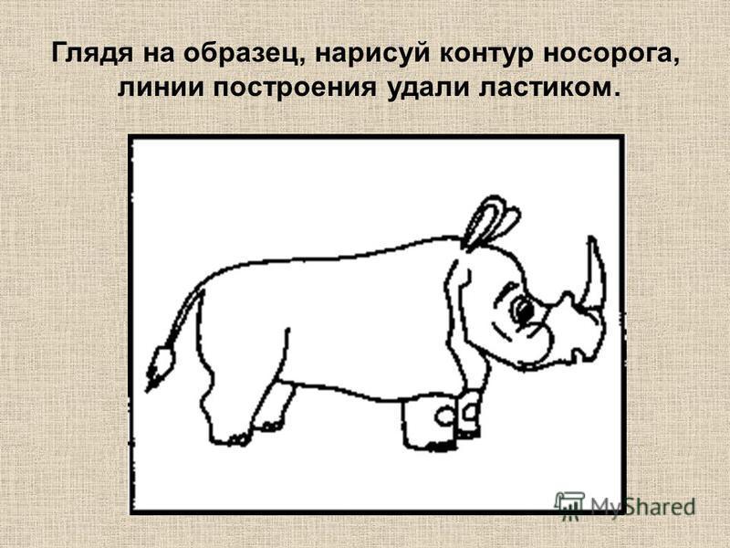 Глядя на образец, нарисуй контур носорога, линии построения удали ластиком.