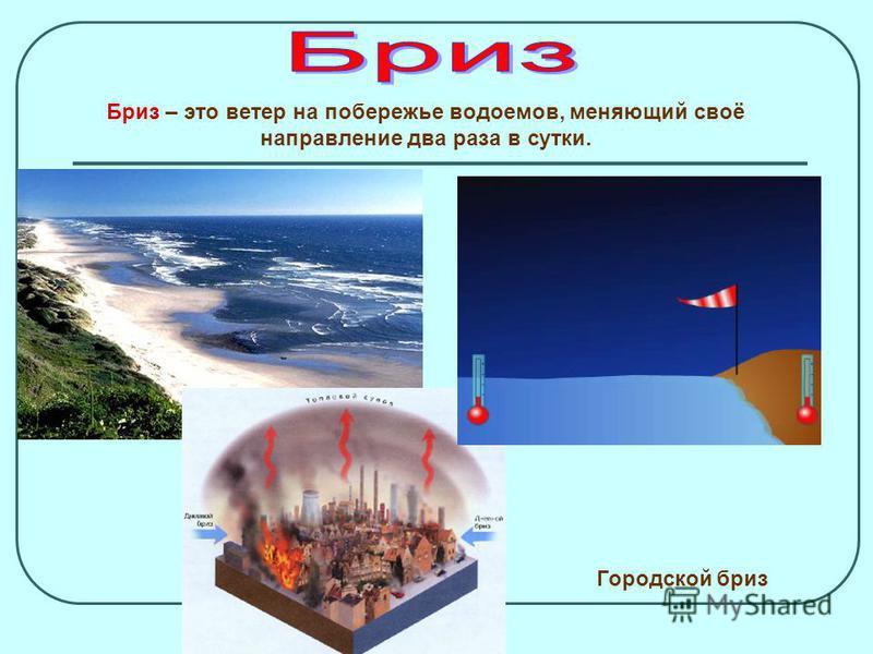 1. Разница в атмосферном давлении. 2. Разный характер подстилающей поверхности (суша и вода). 3. Разная высота над уровнем моря. 4. Разная широта и разный угол падения солнечных лучей. Чем больше разность давления, тем сильнее ветер, тем больше его с