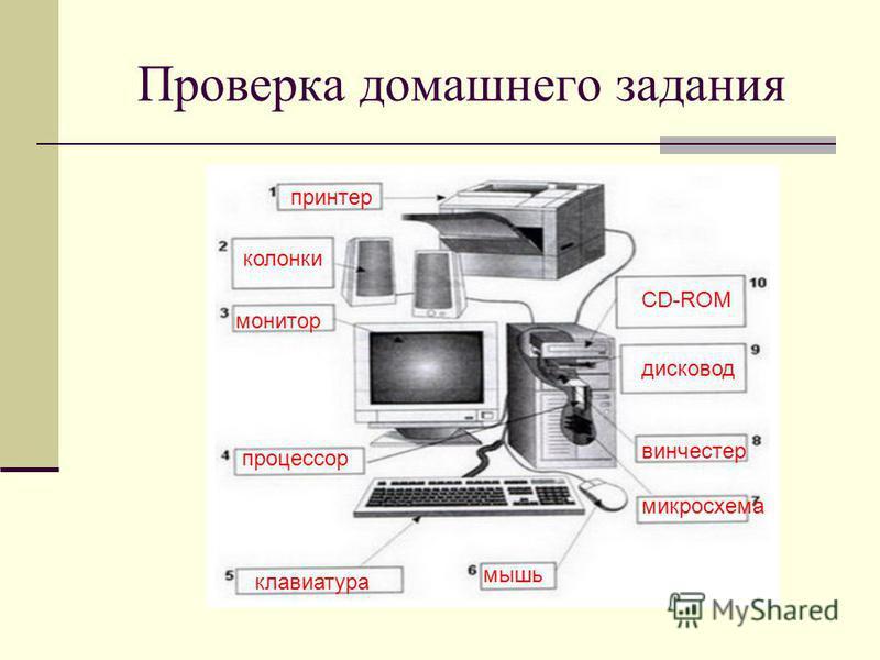 Проверка домашнего задания принтер колонки монитор процессор CD-ROM дисковод винчестер микросхема мышь клавиатура