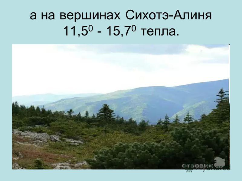 а на вершинах Сихотэ-Алиня 11,5 0 - 15,7 0 тепла.