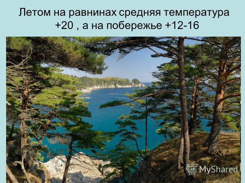 Летом на равнинах средняя температура +20, а на побережье +12-16