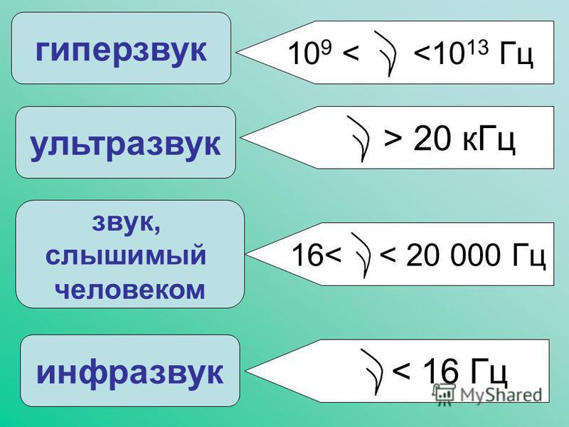 звук, слышимый человеком ультразвук гиперзвук инфразвук > 20 к Гц 10 9 < <10 13 Гц 16< < 20 000 Гц < 16 Гц