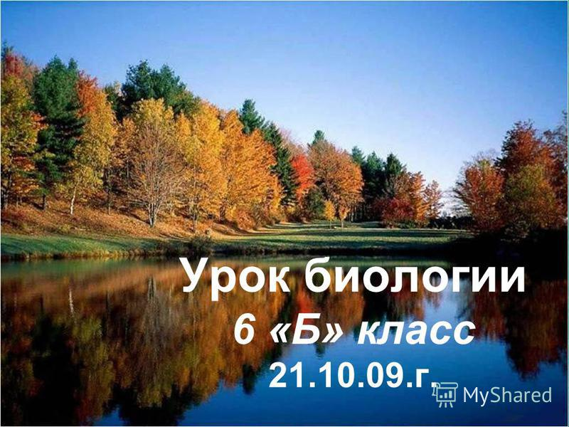 Урок биологии 6 «Б» класс 21.10.09.г.