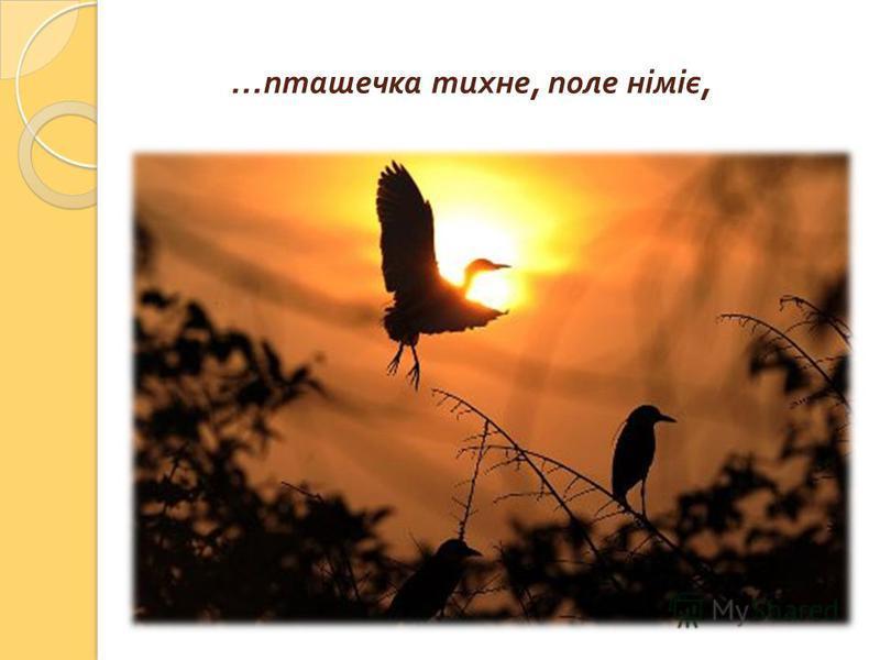 … пташечка тихне, поле німіє,