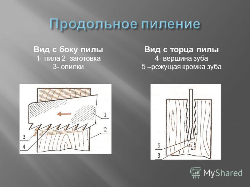 Вид с боку пилы 1- пила 2- заготовка 3- опилки Вид с торца пилы 4- вершина зуба 5 –режущая кромка зуба