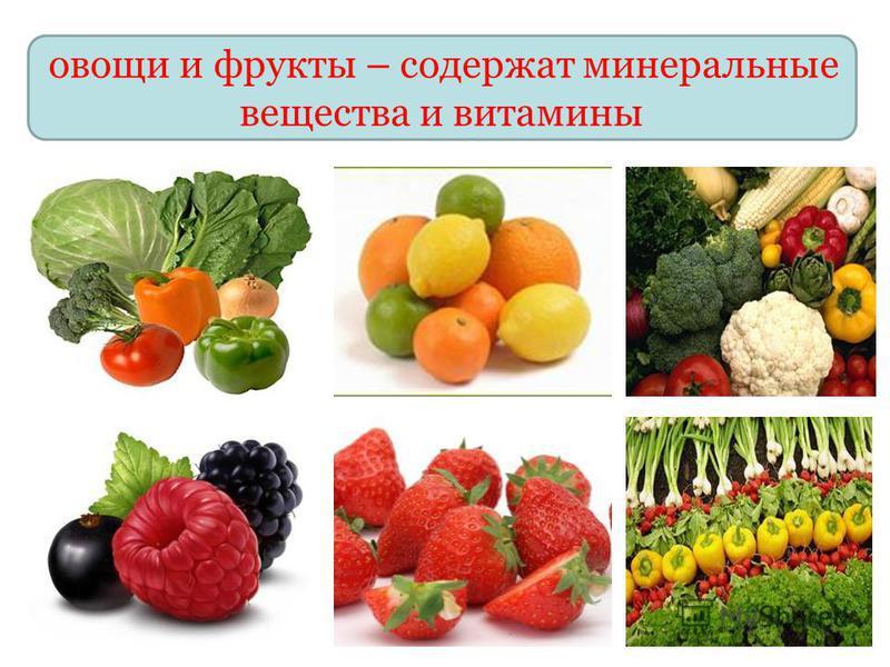 овощи и фрукты – содержат минеральные вещества и витамины
