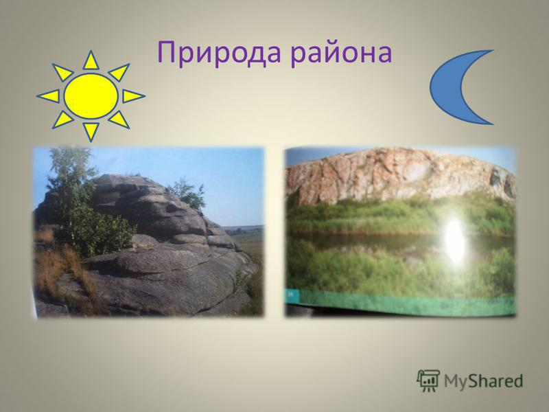 Природа района