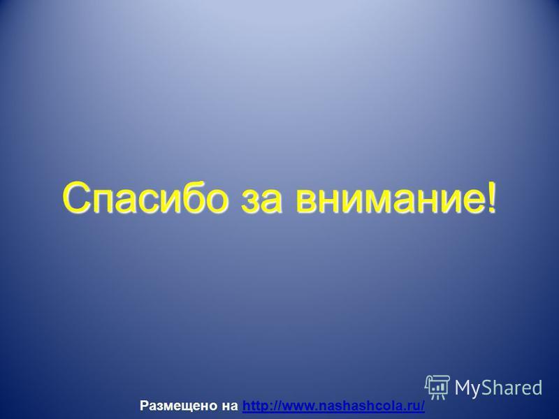 Спасибо за внимание! Размещено на http://www.nashashcola.ru/ http://www.nashashcola.ru/