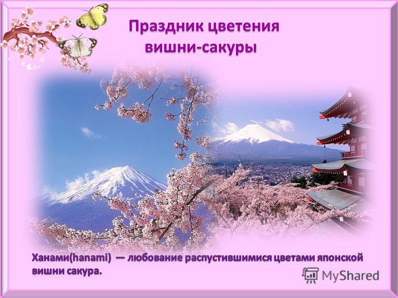 Праздник цветения вишни-сакуры