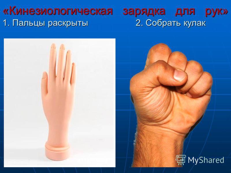 «Кинезиологическая зарядка для рук» 1. Пальцы раскрыты 2. Собрать кулак