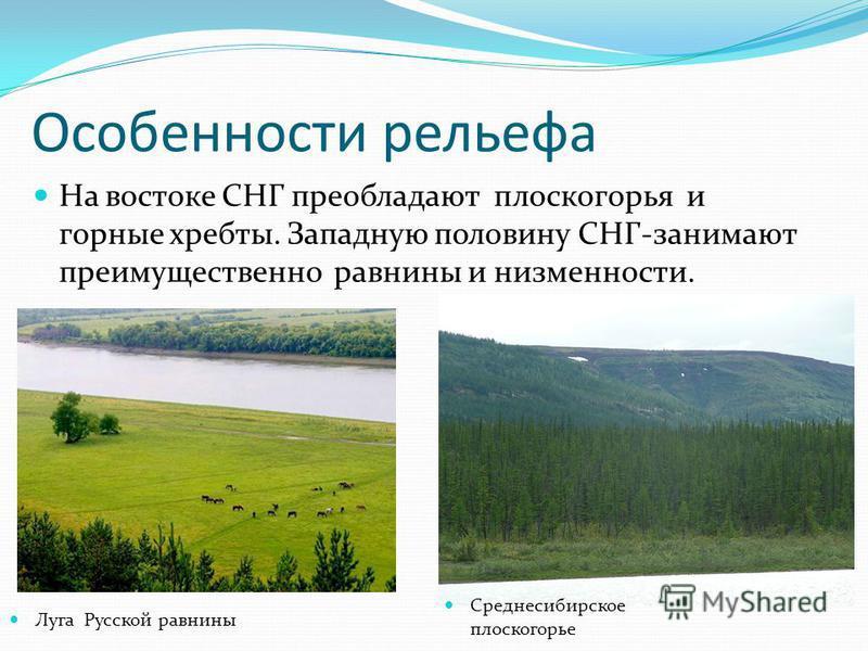 Особенности рельефа На востоке СНГ преобладают плоскогорья и горные хребты. Западную половину СНГ-занимают преимущественно равнины и низменности. Луга Русской равнины Среднесибирское плоскогорье