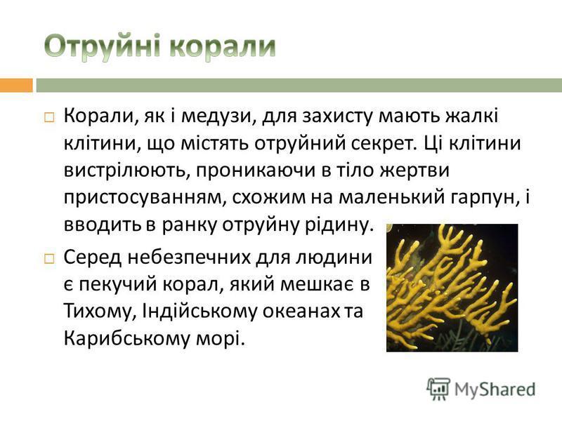 Корали, як і медузи, для захисту мають жалкі клітини, що містять отруйний секрет. Ці клітини вистрілюють, проникаючи в тіло жертви пристосуванням, схожим на маленький гарпун, і вводить в ранку отруйну рідину. Серед небезпечних для людини є пекучий ко