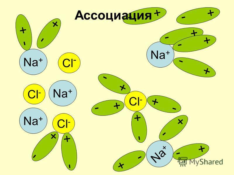Na + Cl - Na + + - Na + + - Na + + - Cl - + - Ассоциация