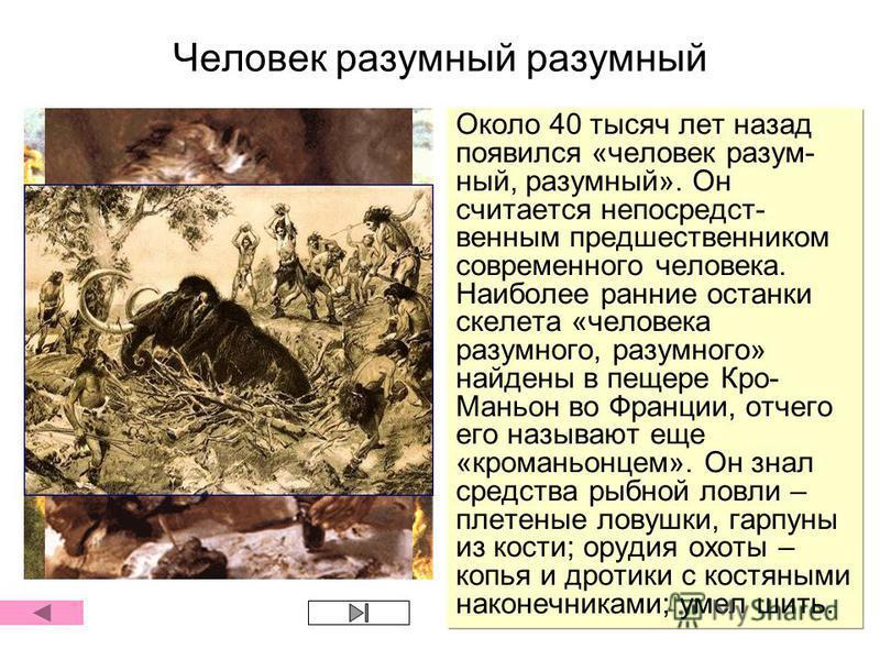 Человек разумный разумный Около 40 тысяч лет назад появился «человек разумный, разумный». Он считается непосредственным предшественником современного человека. Наиболее ранние останки скелета «человека разумного, разумного» найдены в пещере Кро- Мань