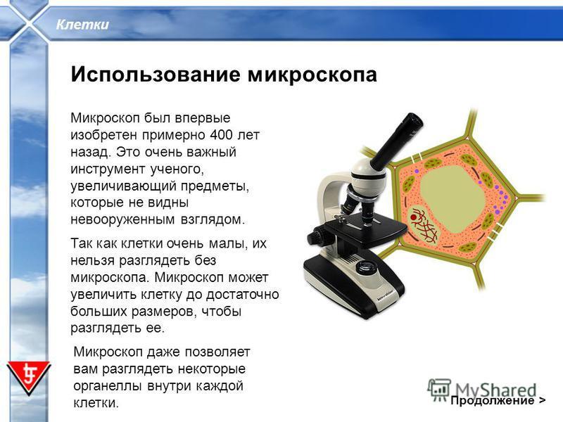 Клетки Использование микроскопа Микроскоп был впервые изобретен примерно 400 лет назад. Это очень важный инструмент ученого, увеличивающий предметы, которые не видны невооруженным взглядом. Так как клетки очень малы, их нельзя разглядеть без микроско