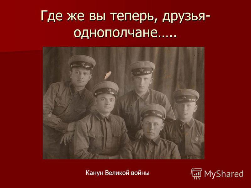 Где же вы теперь, друзья- однополчане….. Канун Великой войны