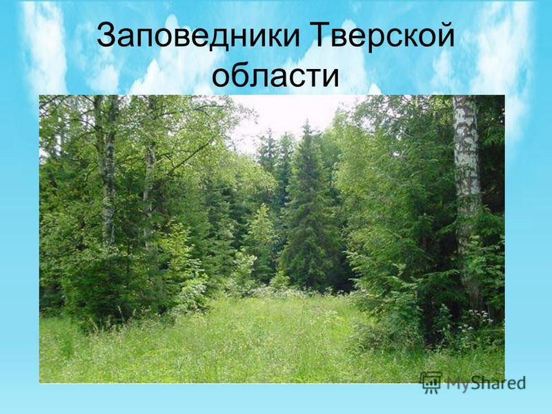 Заповедники Тверской области