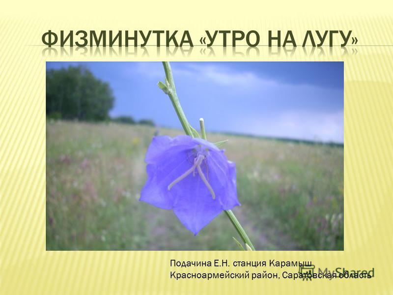 Подачина Е.Н. станция Карамыш Красноармейский район, Саратовская область