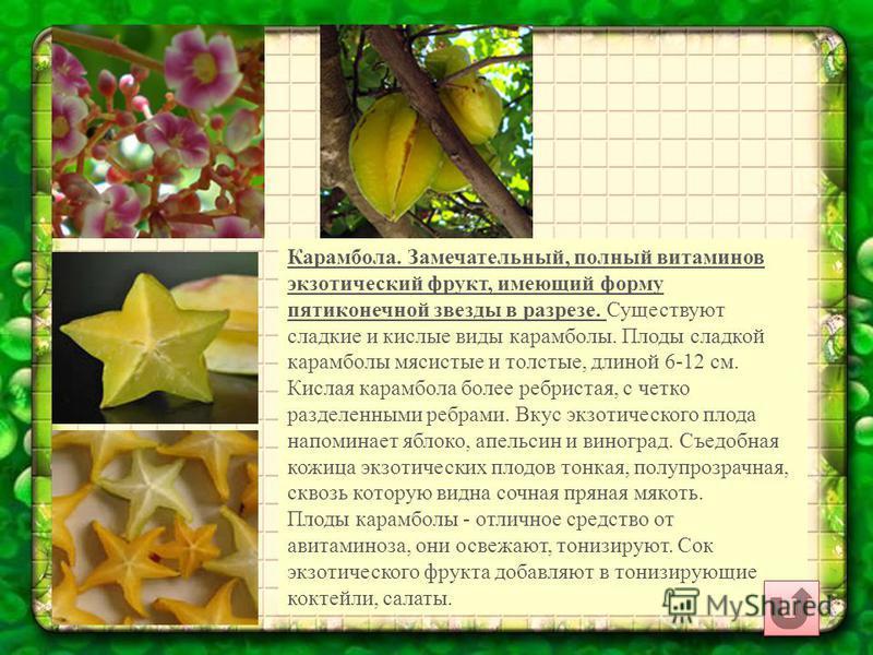 Карамбола. Замечательный, полный витаминов экзотический фрукт, имеющий форму пятиконечной звезды в разрезе. Существуют сладкие и кислые виды карамболы. Плоды сладкой карамболы мясистые и толстые, длиной 6-12 см. Кислая карамбола более ребристая, с че