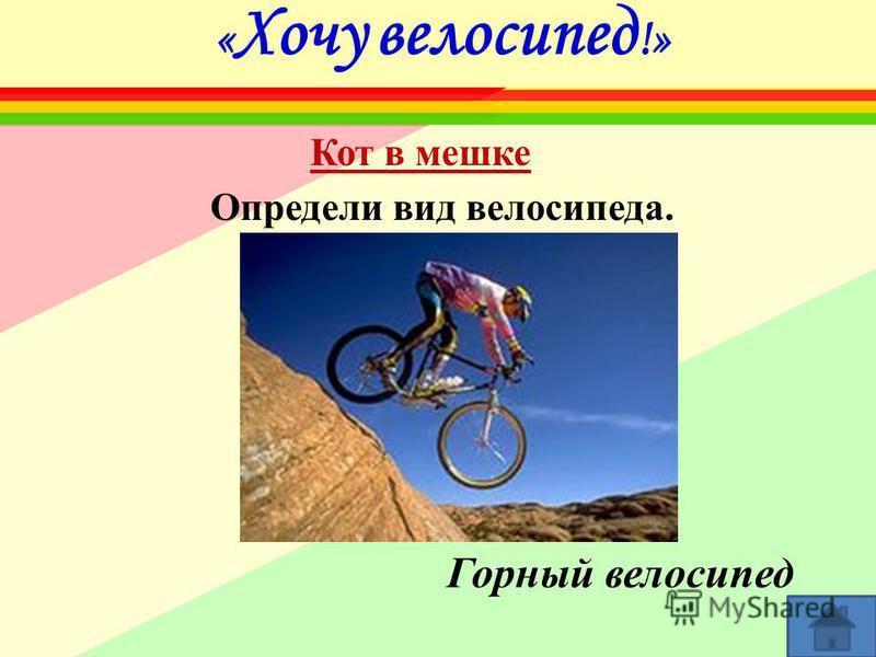 « Хочу велосипед !» Определи вид велосипеда. Горный велосипед Кот в мешке