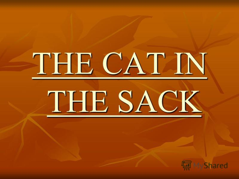 THE CAT IN THE SACK THE CAT IN THE SACK