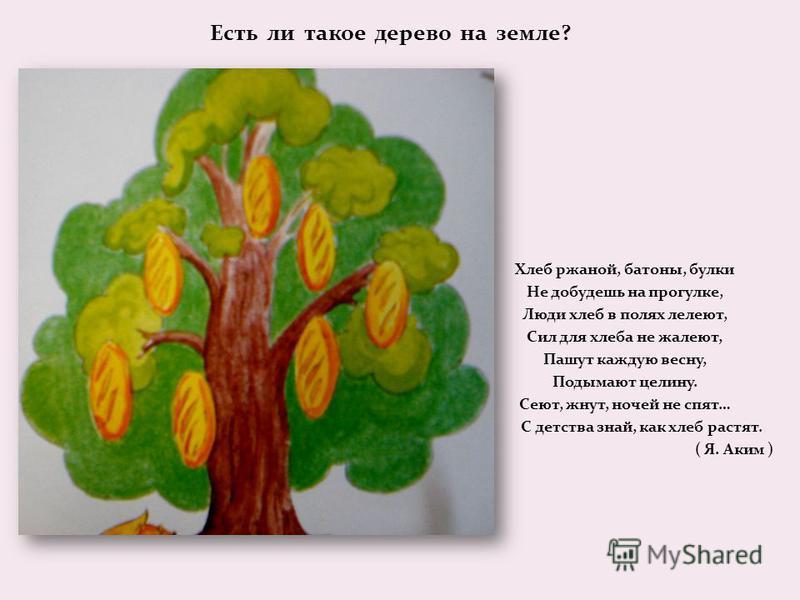 Есть ли такое дерево на земле? Хлеб ржаной, батоны, булки Не добудешь на прогулке, Люди хлеб в полях лелеют, Сил для хлеба не жалеют, Пашут каждую весну, Подымают целину. Сеют, жнут, ночей не спят… С детства знай, как хлеб растят. ( Я. Аким )