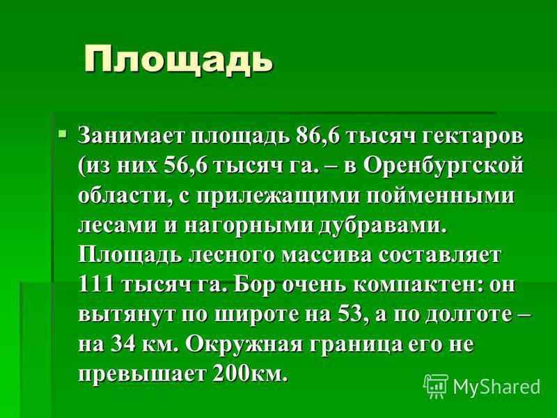 Площадь Площадь Занимает площадь 86,6 тысяч гектаров (из них 56,6 тысяч га. – в Оренбургской области, с прилежащими пойменными лесами и нагорными дубравами. Площадь лесного массива составляет 111 тысяч га. Бор очень компактен: он вытянут по широте на