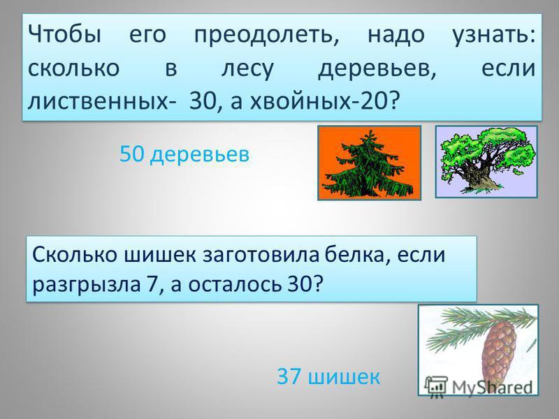Сколько шишек заготовила белка, если разгрызла 7, а осталось 30? 37 шишек Чтобы его преодолеть, надо узнать: сколько в лесу деревьев, если лиственных- 30, а хвойных-20? 50 деревьев