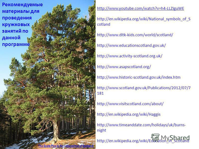 http://www.youtube.com/watch?v=h4-LLZIguWE http://en.wikipedia.org/wiki/National_symbols_of_S cotland http://www.dltk-kids.com/world/scotland/ http://www.educationscotland.gov.uk/ http://www.activity-scotland.org.uk/ http://www.asapscotland.org/ http