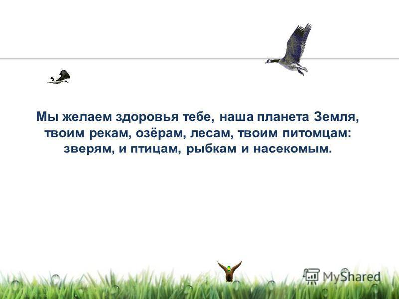 Мы желаем здоровья тебе, наша планета Земля, твоим рекам, озёрам, лесам, твоим питомцам: зверям, и птицам, рыбкам и насекомым.