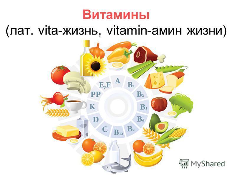 Витамины (лат. vita-жизнь, vitamin-амин жизни)